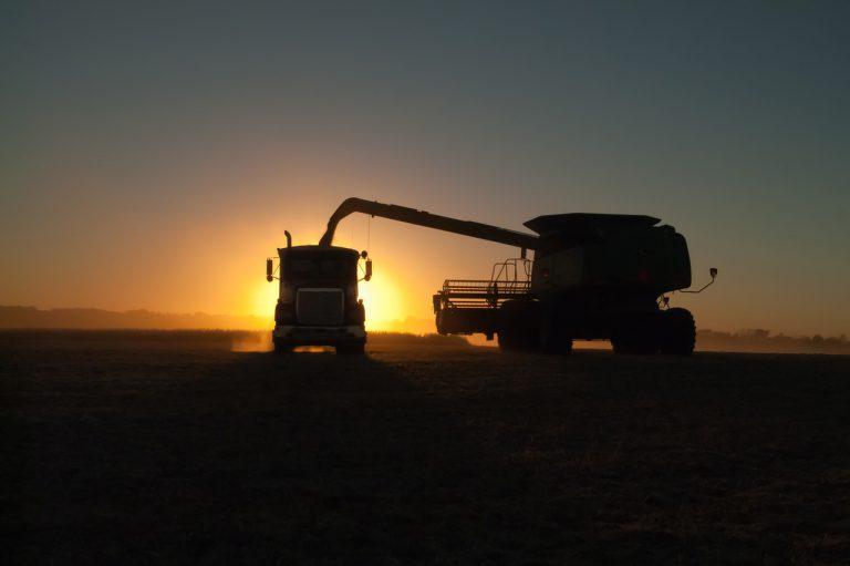 Descubra quais normas seguir no transporte de grãos